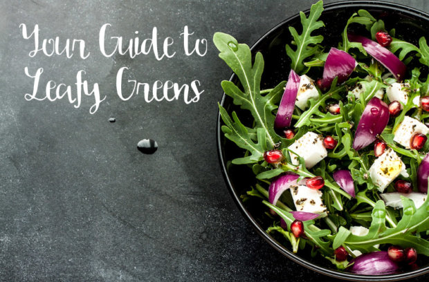 Your Guide to Leafy Greens
