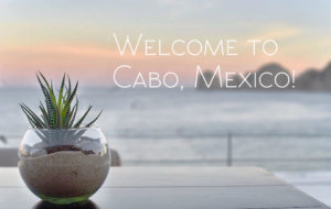 sur cabo travel guide mexico