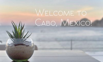 sur cabo travel guide mexico